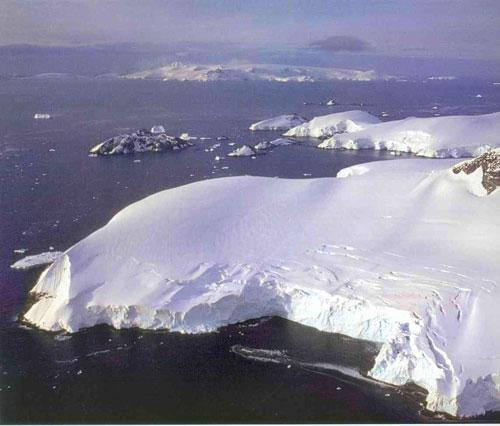 Océano Antártico, heladas aguas llenas de vida