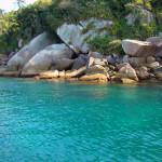 Reserva Biológica de Arvoredo, tesoro del Brasil