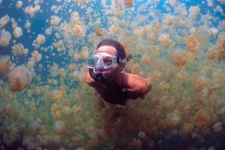 La laguna de las medusas