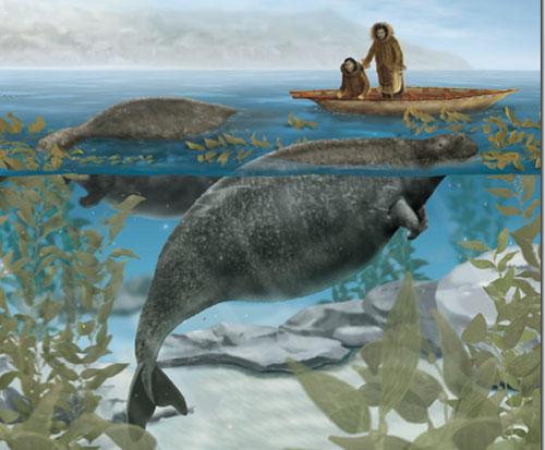 Animales marinos extintos