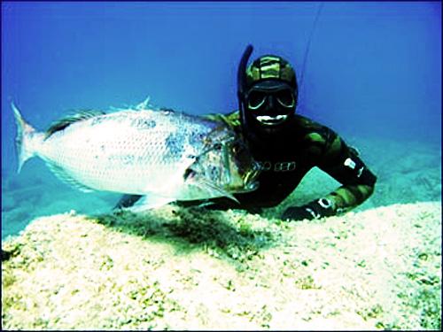 La pesca submarina podría verse restringida