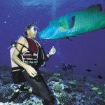Bucear en los mares de Tahiti