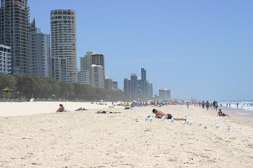 surfers paradise 2