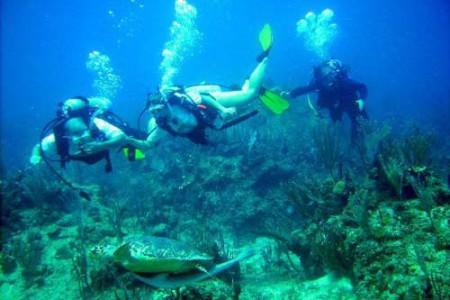 Sitios de buceo en Puerto Rico