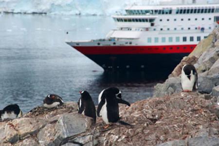 Cruceros por la Antártida