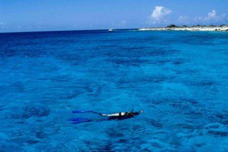 Bonaire, paraíso bajo el agua