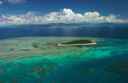 Isla Green