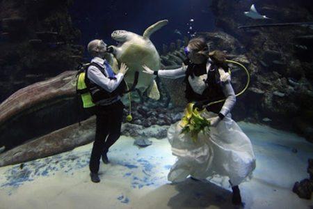 Celebrar una boda submarina