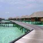 Bucear en las Maldivas, Atolón Ari