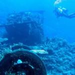 Descubriendo el Blue Bell en Port Sudan