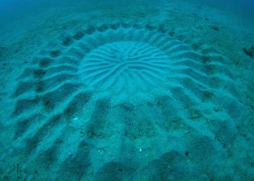 Figura submarina