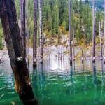 El Lago Kaindy y su bosque sumergido