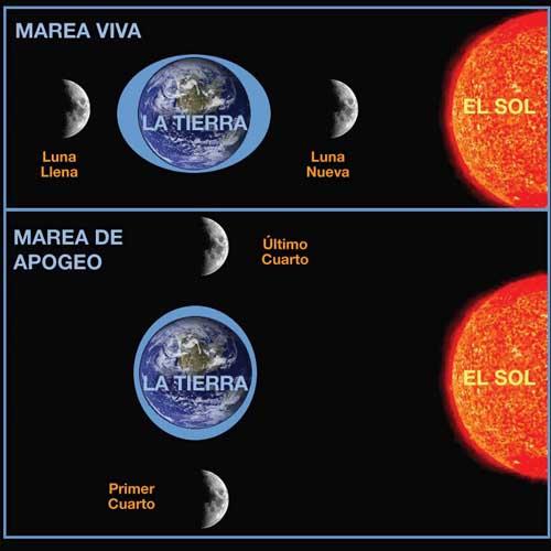 Mareas Lunares