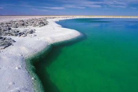 El Salar de Atacama y la Laguna Cejar